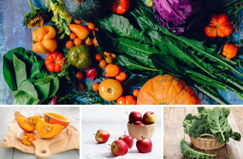 10 best fall superfoods
