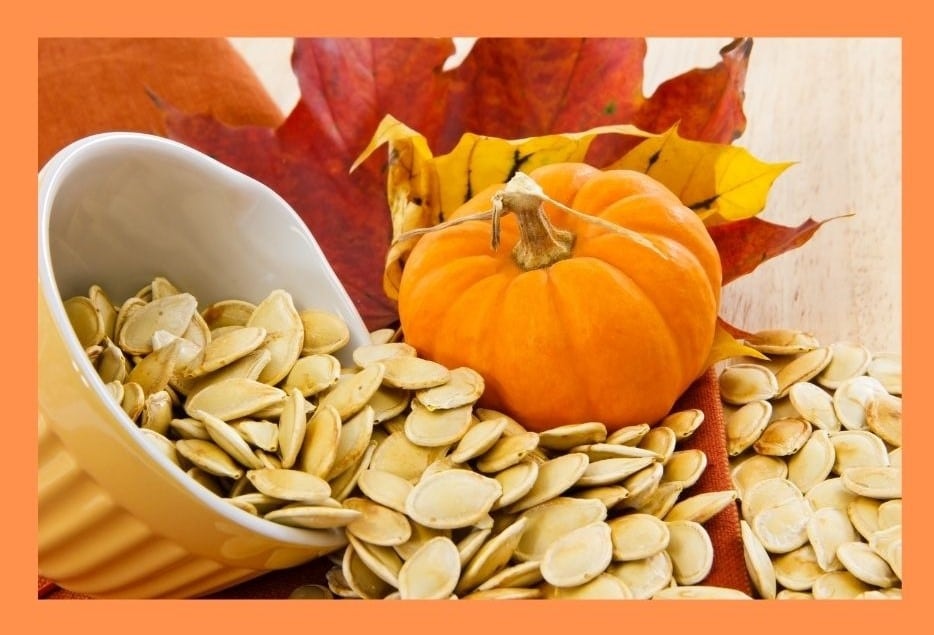 pumpkin seeds are loaded with antioxidants