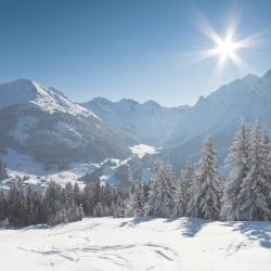 Winter Wellness Tips: 10 Ways…